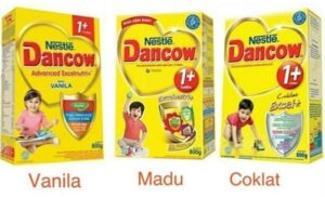susu yang mengandung zat besi